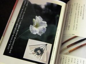吉岡幸雄著『源氏物語の色辞典』「夕顔」より