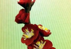 心游舎ワークショップ 石清水八幡宮「御花神饌プロジェクト」